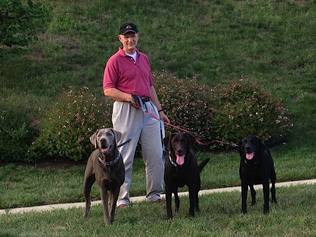 image of kent politsch walking with his dogs
